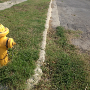 Street curb filled with overgrown grass