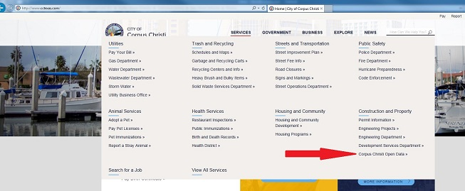 "Screen shot of ""Services"" drop down list."