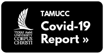 TAMUCC COVID-19 Report